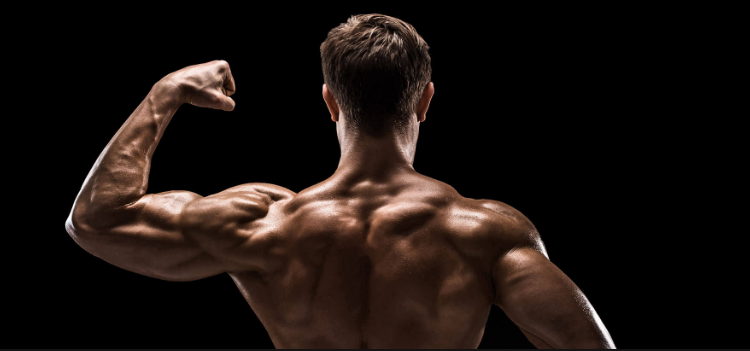 peptides for muscle growth